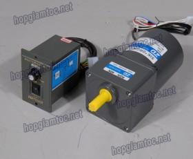 Speed control motor 15w 3IK15RGN-C